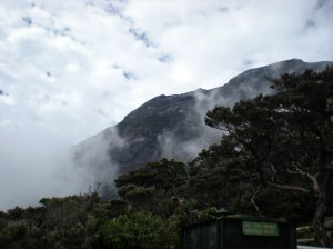 Misty mount