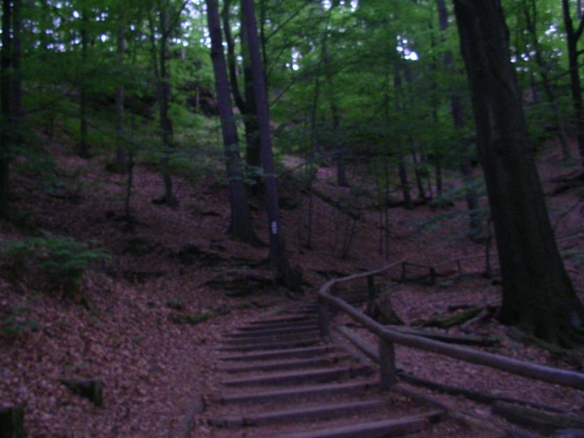 bastei hike, saxon switzerland, elbes sandstone mountains, saxony, eastern germany, offbeat germany, dresden, stadt wehlen