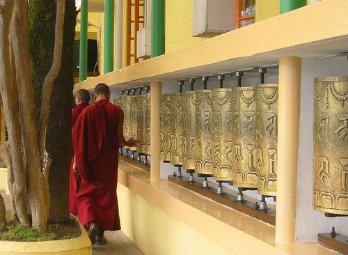 Mcleodganj, Dharamsala, monastery, Dalai lama, monk