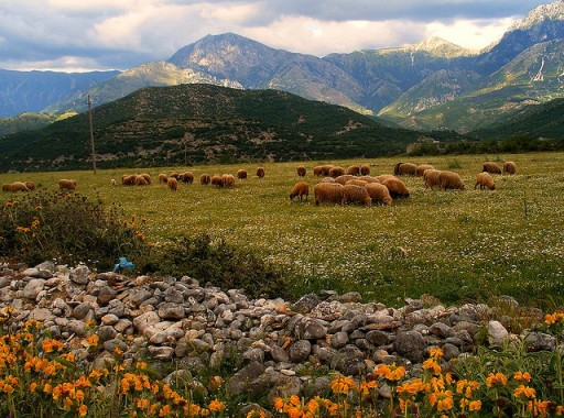 Albania, countryside
