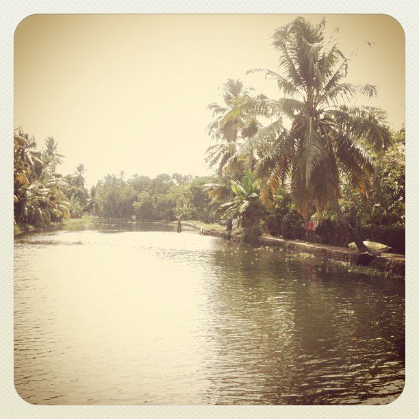 backwaters instagram