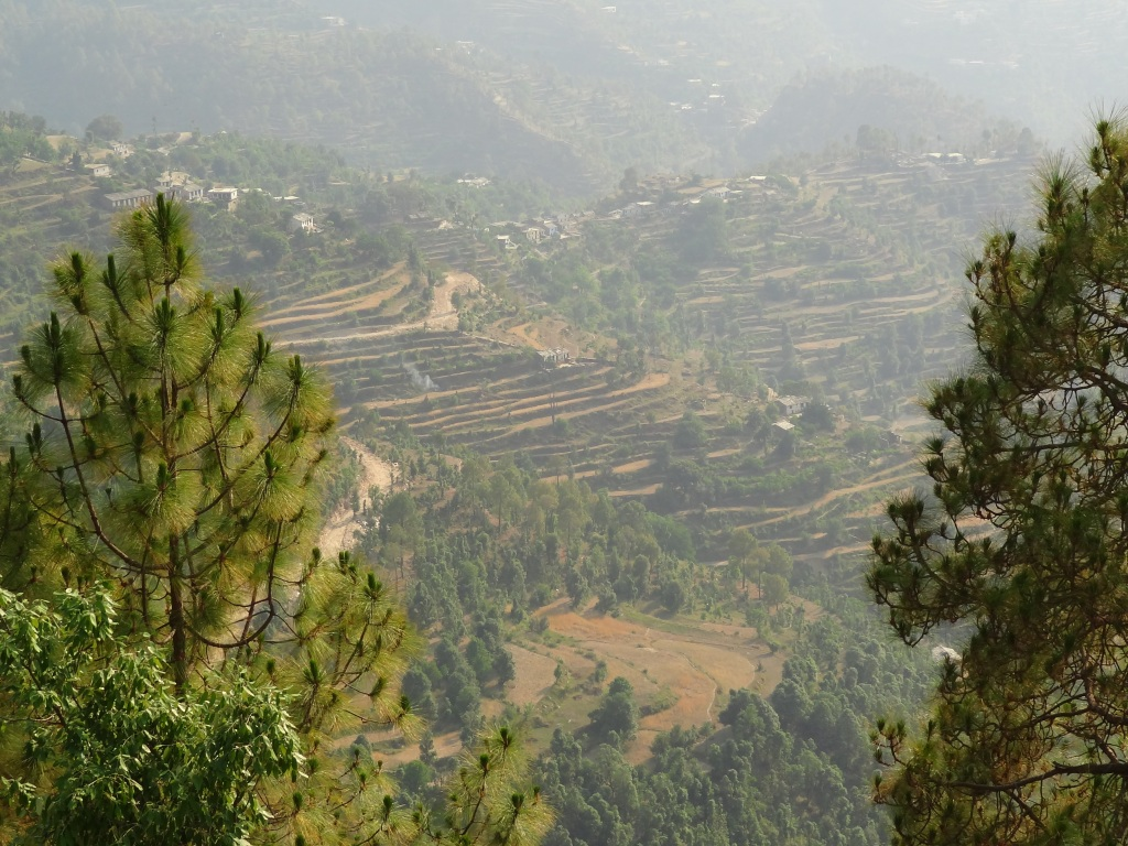 Peora, views, Kumaon, Uttarakhand, Kumaoni villages, offbeat travel, Indian villages, Himalayan villages, countryside