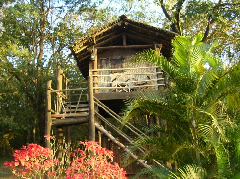 Machan, The Hermitage, Belgaum, Khanapur, tree house, offbeat travel, India forest lodge