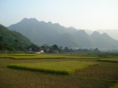 Northwest Vietnam, offbeat Vietnam, rice paddy vietnam, Ben Lac village, Off the beaten track, Vietnam travel blog, Mai Chau, small towns near Hanoi