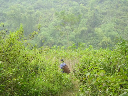 Northwest Vietnam, offbeat Vietnam, mountain women, Ben Lac village, Off the beaten track, Vietnam travel blog, Mai Chau, small towns near Hanoi