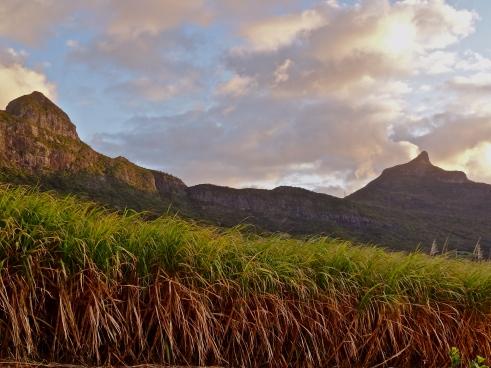 Mauritius mountains, Mauritius photos, eco tourism Mauritius, Mon Choix, Mauritius sugarcane