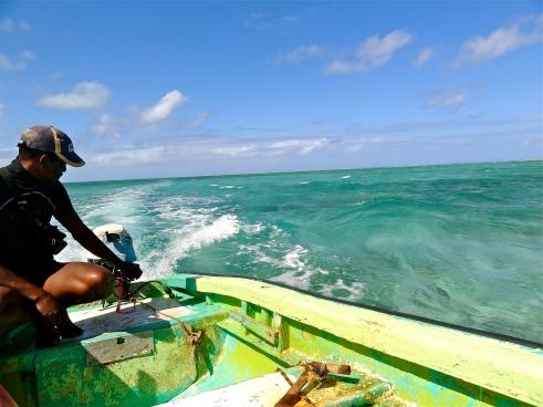 Mauritius islands, Ile aux cerfs, Ile aux aigrettes, ile aux cerfs mauritius