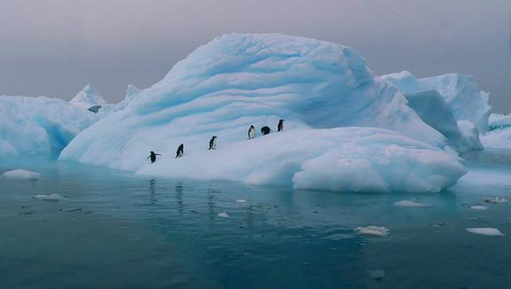 Antarctica, Antarctica photos
