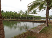 offbeat Kerala, best kept secrets Kerala, Kerala undiscovered