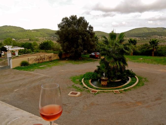spain wine tours, spain wine countryside, spain vineyards