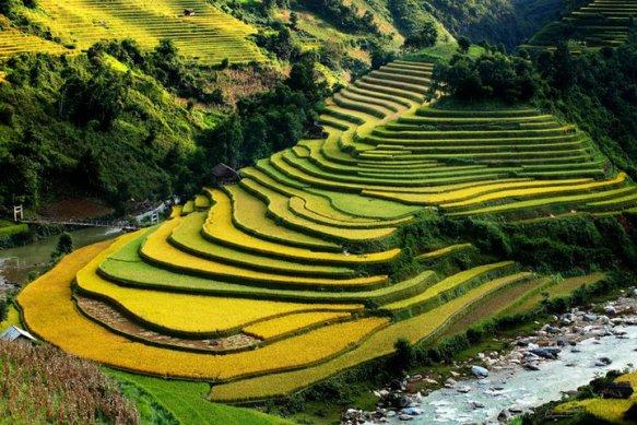 Vietnam photos, Vietnam photo gallery