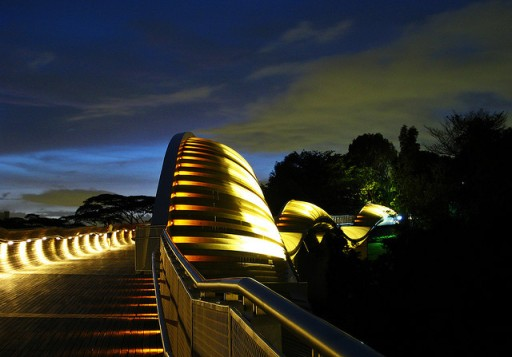 henderson waves, henderson wave, henderson waves bridge, southern ridges singapore