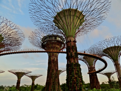 Gardens by the bay Singapore, Singapore supertrees
