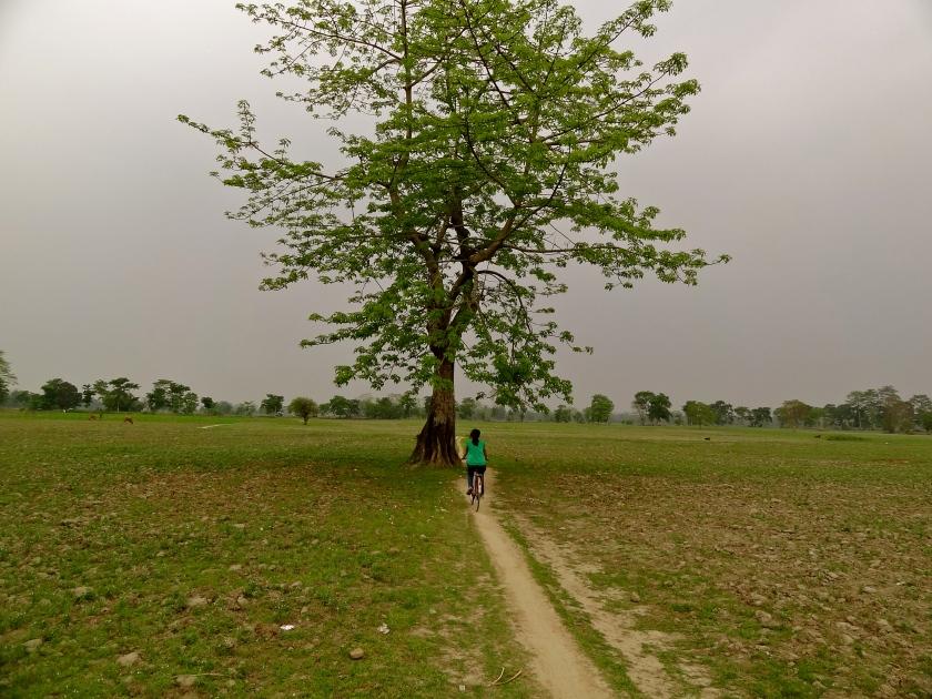 Majuli, Majuli island, Majuli Assam