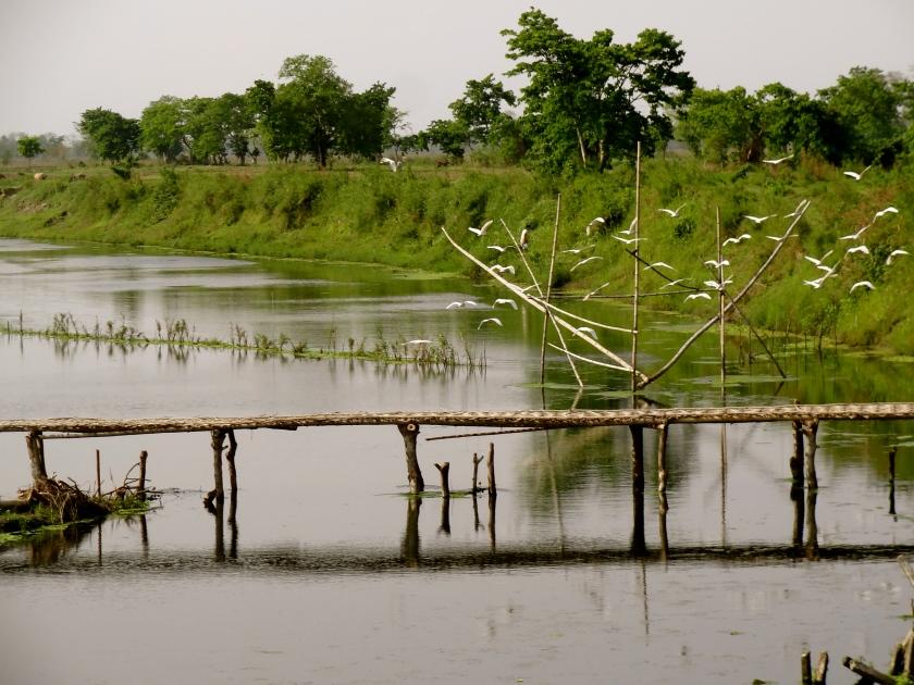 Majuli island photos, Majuli Assam, Majuli