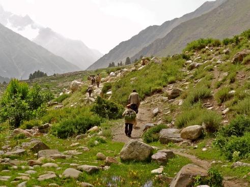 Himalayas photos, Himalayas secrets, Chitkul, Kinnaur