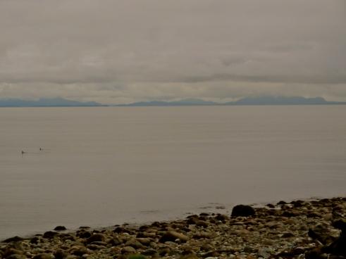 Vancouver Tsawwassen, Vancouver beaches, Vancouver secret