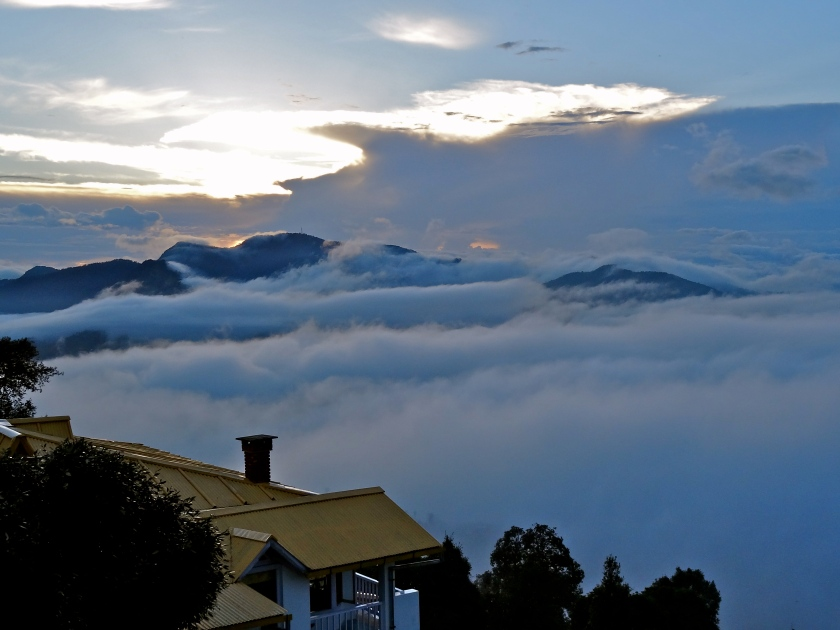 Te Aroha Dhanachuli, hill station in Uttarakhand, Delhi weekend getaways