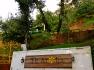 Te Aroha Dhanachuli