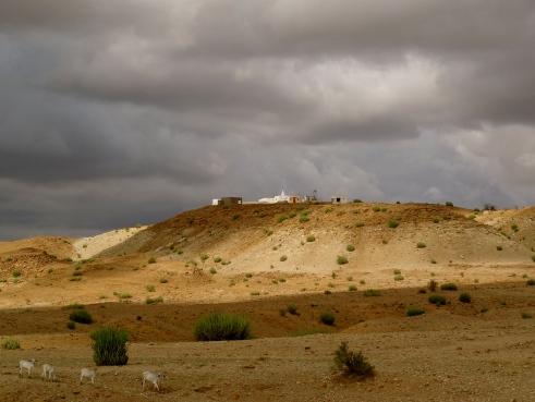 Rajasthan monsoon, Jaisalmer photos, Thar desert Rajasthan, Thar desert weather