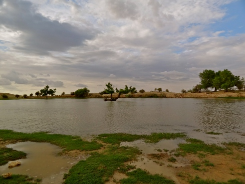 Thar desert pictures, desert oasis pictures, Rajasthan rain, Jaisalmer monsoon