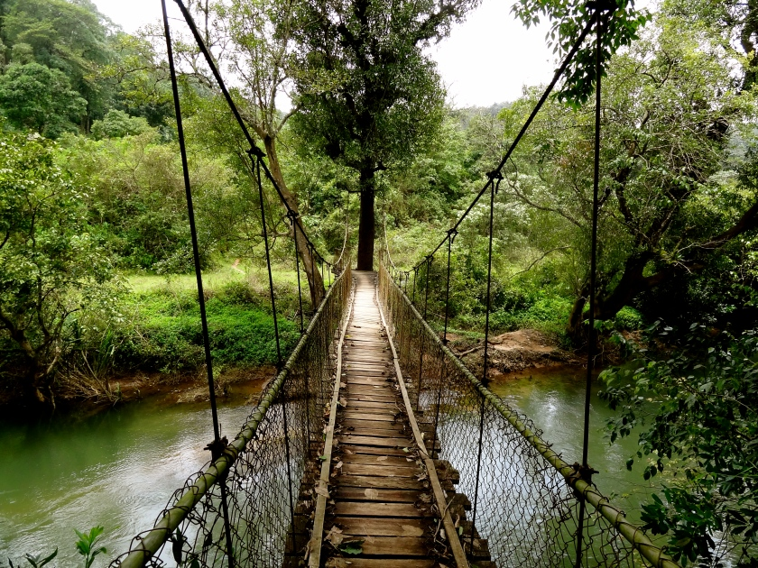 Coorg photos, Karnataka villages, hanging bridge, coorg forests