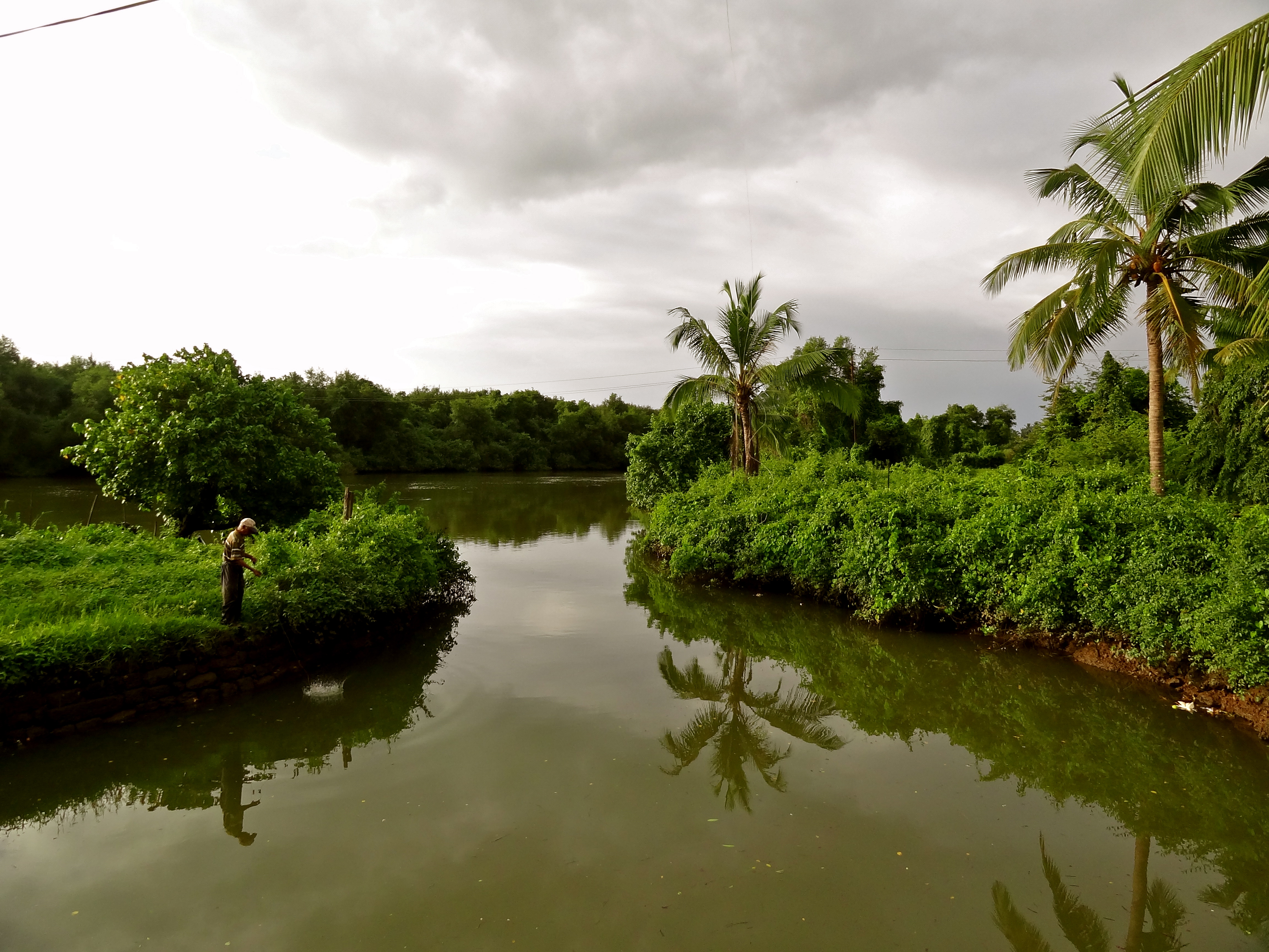 in photos  goa in the monsoons
