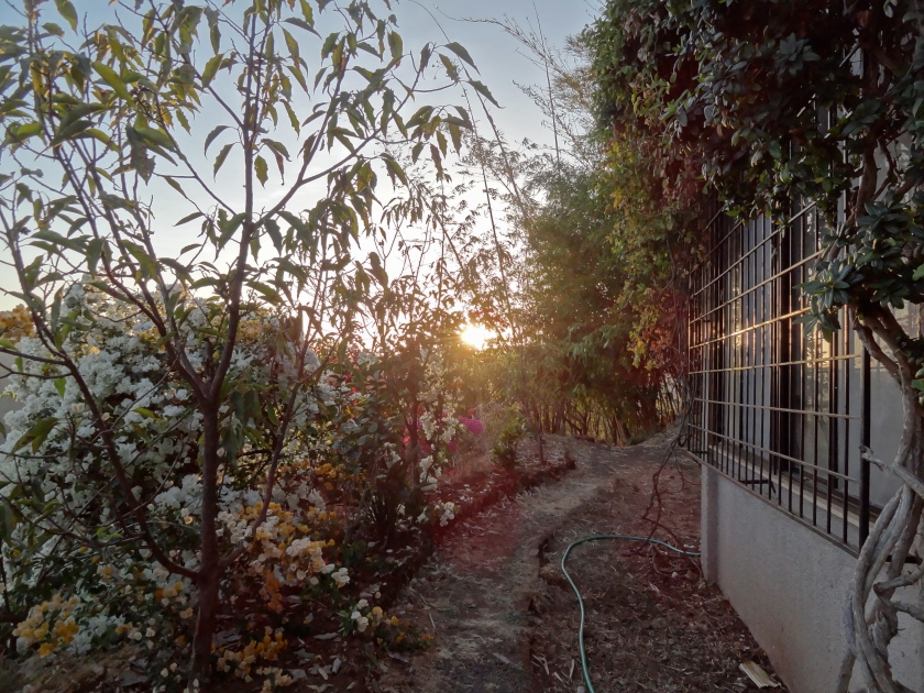 Panchgani, Devrai Art village, weekend getaways from Mumbai, Devrai homestay
