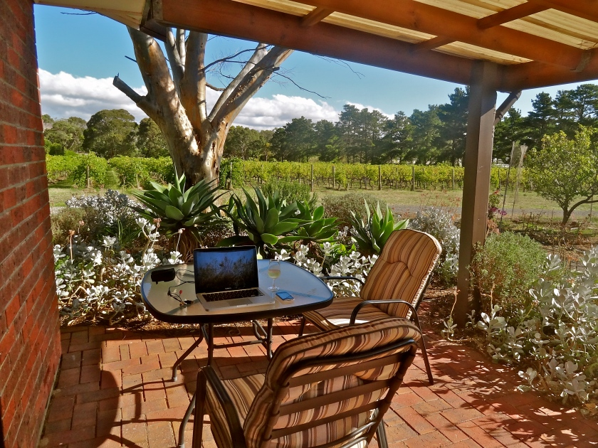 Linger Longer vineyard, Mclaren vale accommodation, Mclaren vale wines