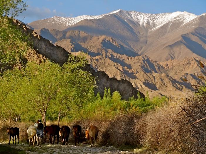 Ladakh villages, Leh life, Indian villages