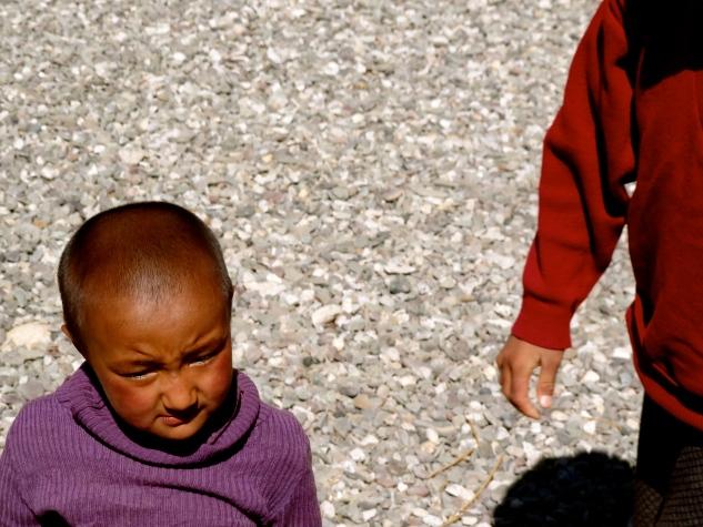 Ladakh people, Ladakh nyerma