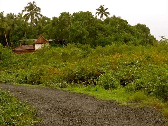 Goa islands, island hopping Goa