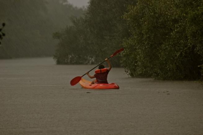 Goa kayaking, Goa backwaters