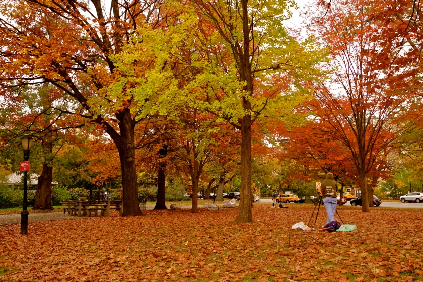 new york fall, new york fall colors, NYC fall, NYC photos