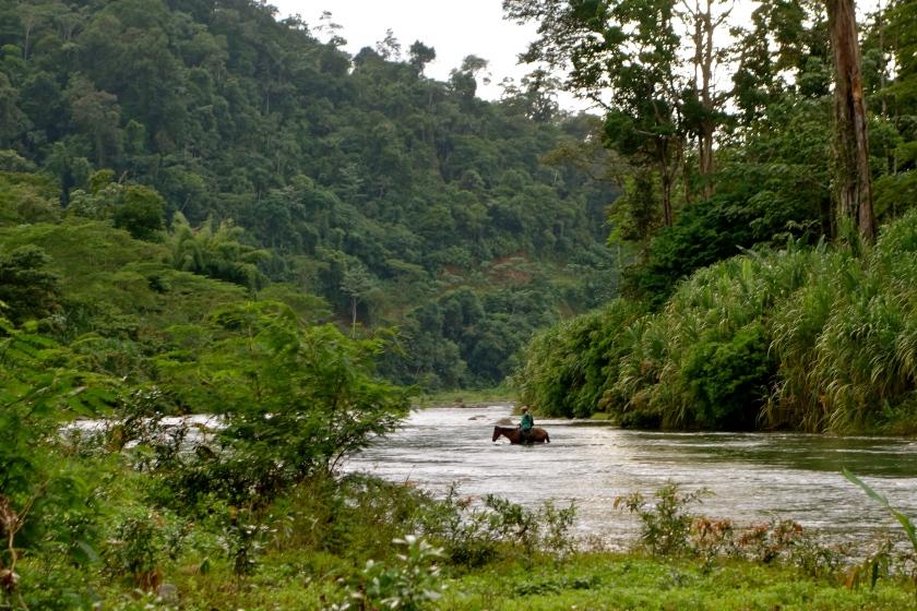Costa Rica people, Costa Rica pura vida