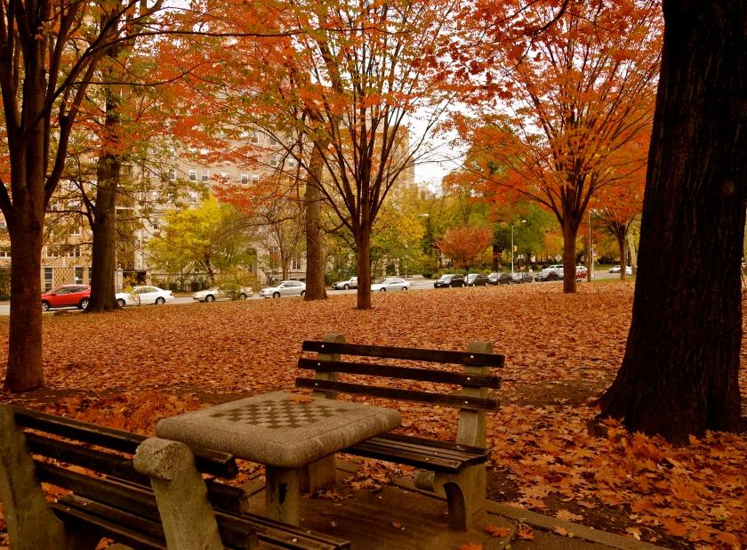 New York autumn, US autumn