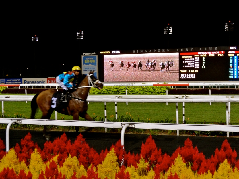 Singapore turf club, cool things to do in singapore