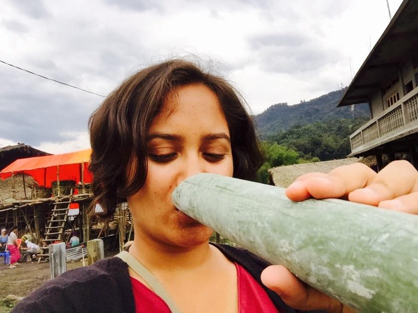 arunachal pradesh apong, mopin festival