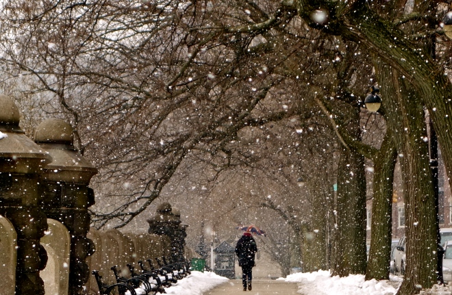 NYC winter, NYC snowfall, NYC photos