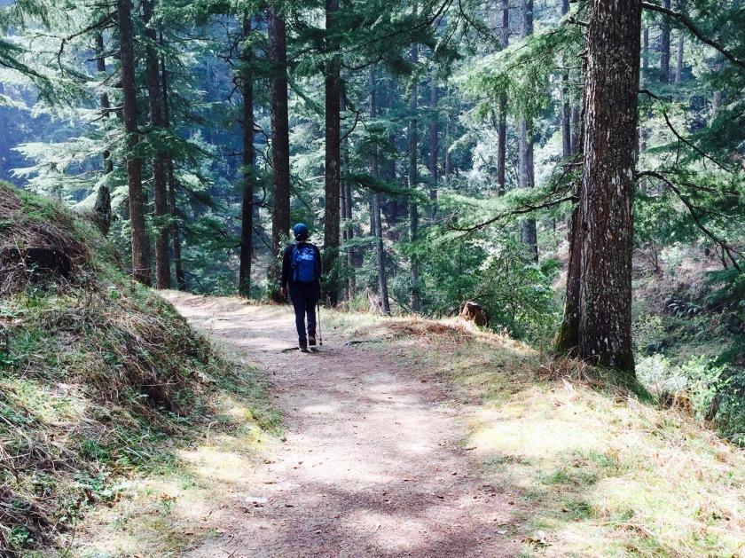 itmenaan lodges village walk, kumaon himalayas