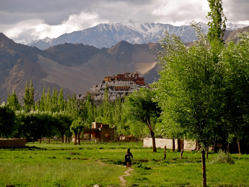 Ladkah pictures, Ladakh responsible travel
