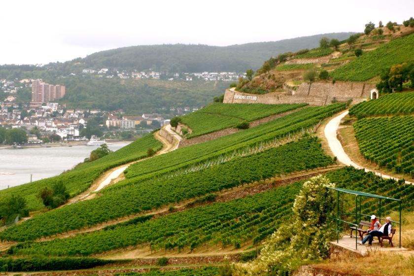 Rudesheimer weinfest, wine festival, #notjustbeer, #joingermantradition
