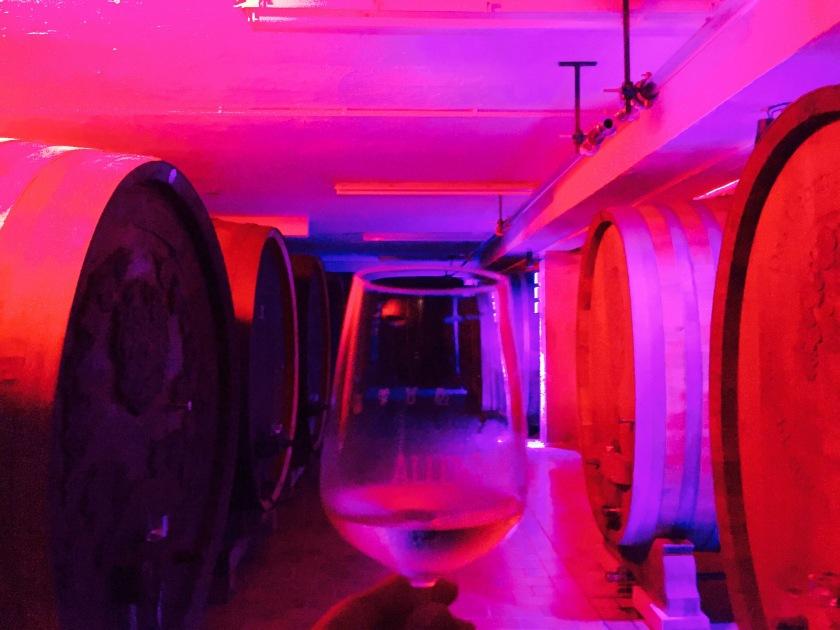 weingut allendorf, wine tasting rheingau, oestrich winkel