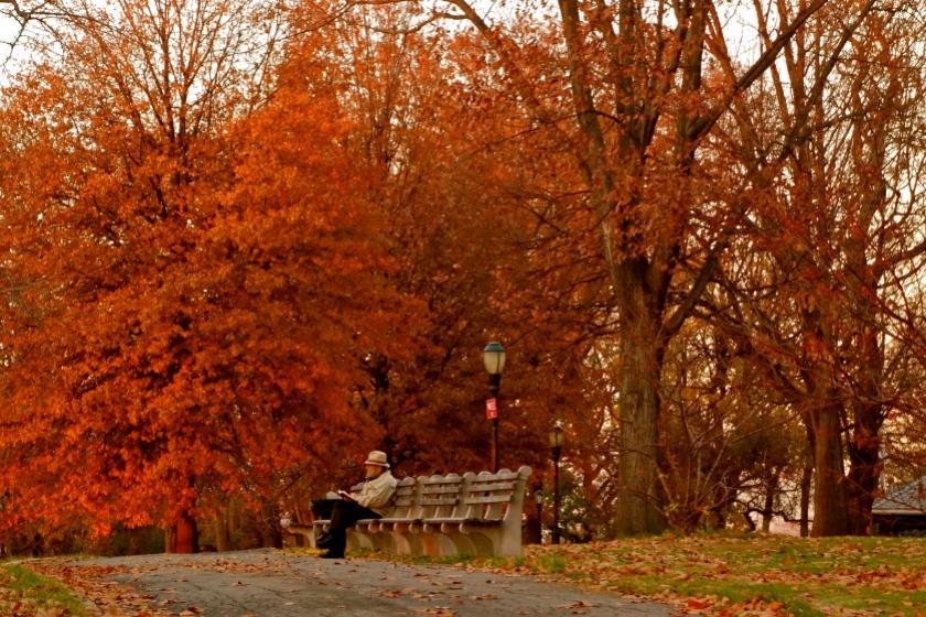 essay autumn season india