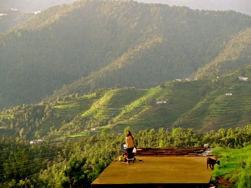 Dhanachuli, Kumaon himalayas, Kumaon uttarakhand, te aroha dhanachuli