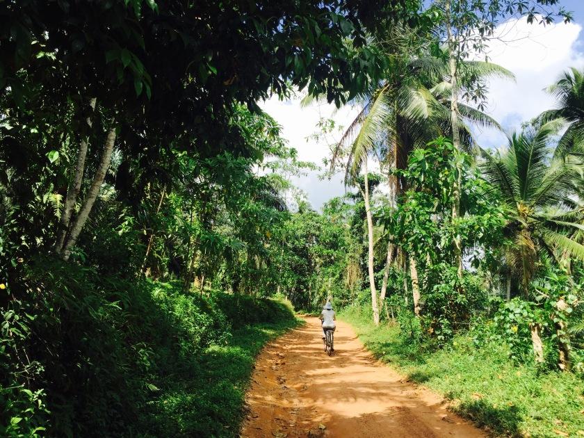 Airbnb negombo, things to do in Sri lanka, Sri lanka locals