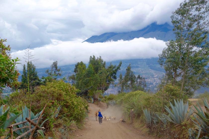ecuador andes, ecuador people, quichua people ecuador, ecuador culture, tunibamba