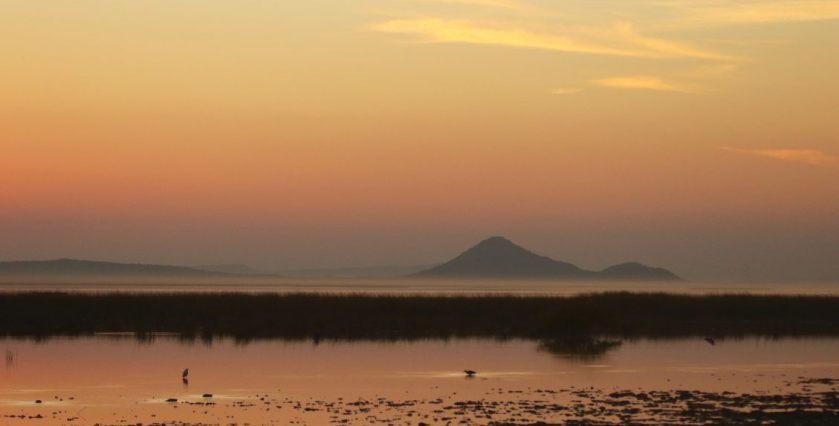 banni grasslands, gujarat photos, gujarat travel guide