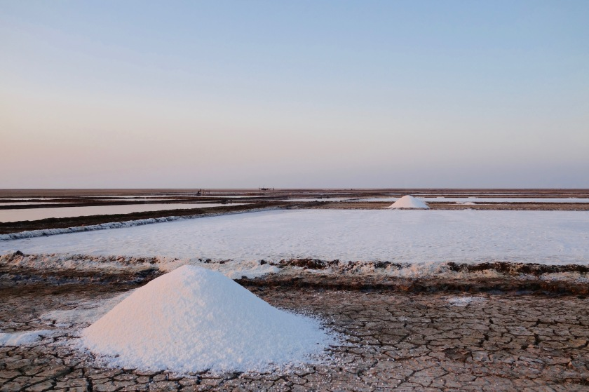 Little rann of kutch, salt pans gujarat, gujarat travel guide