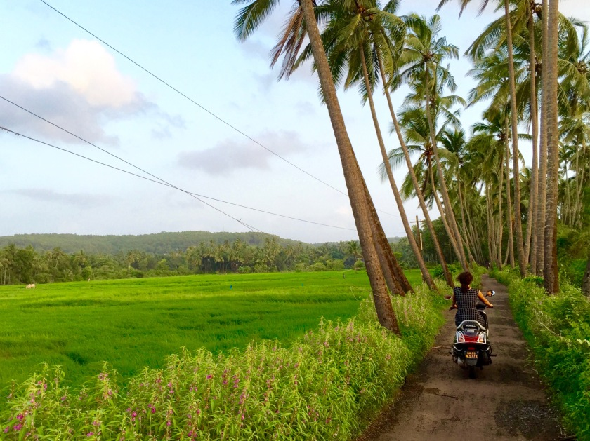 goa monsoon, goa travel guide, offbeat goa